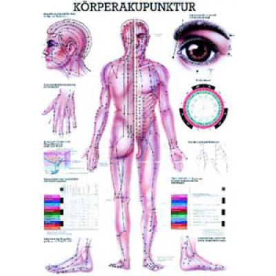 Mini-Poster Körperakupunktur Format 23 x 33 cm