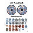 Karte Irisdiagnose Format 50x70cm