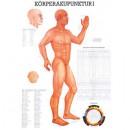 Karte Körperakupunktur I Format 70x100cm
