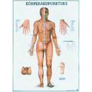 Mini-Poster Körperakupunktur II Format 23 x 33 cm