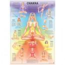 Mini-Poster Chakra Format 23 x 33 cm
