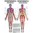 Poster Bindegewebsmassage - Physio III Format 50x70cm