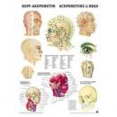 Mini-Poster Kopf-Akupunktur Format 23 x 33 cm